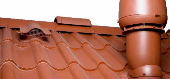 Грибок на крыше